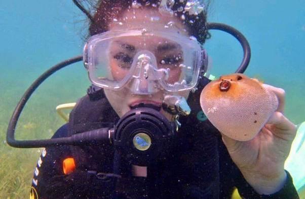 フィリピンでダイビング