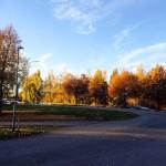 スウェーデン留学をおすすめする3つの理由