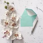 Let's write more letters! 海外のお手紙事情とは!?
