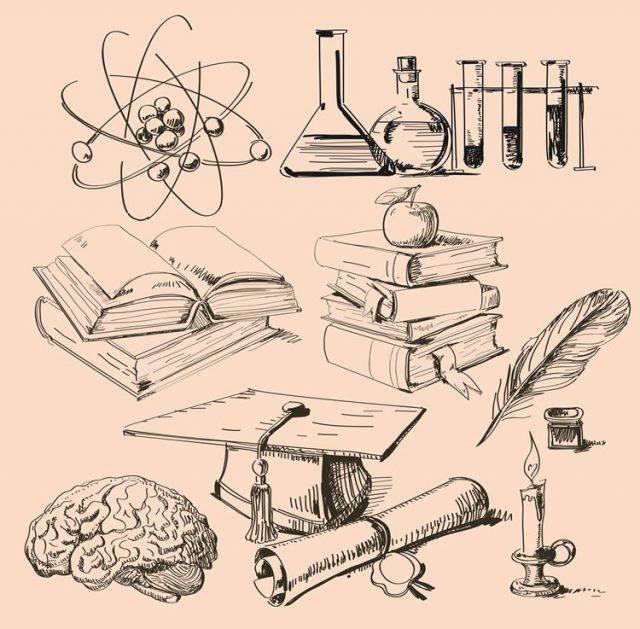 理系の学部