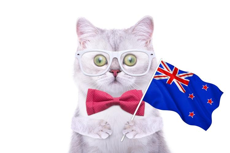 ニュージーランドの高校留学生活
