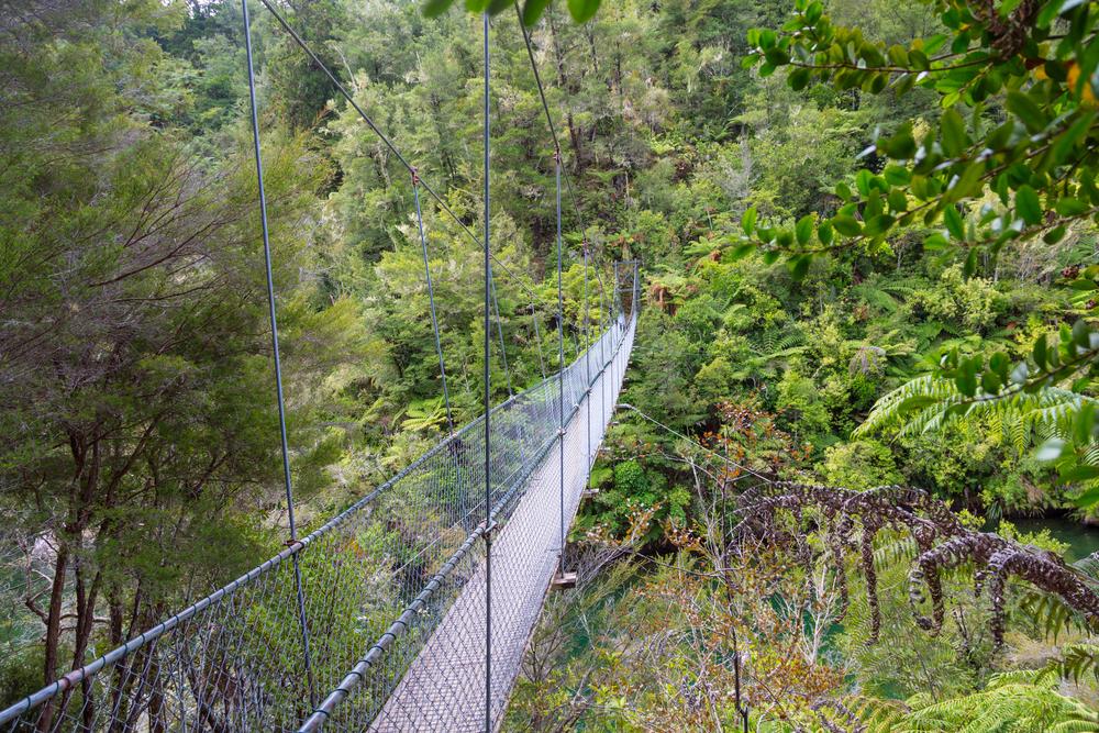 ニュージーランド アベルタスマン国立公園