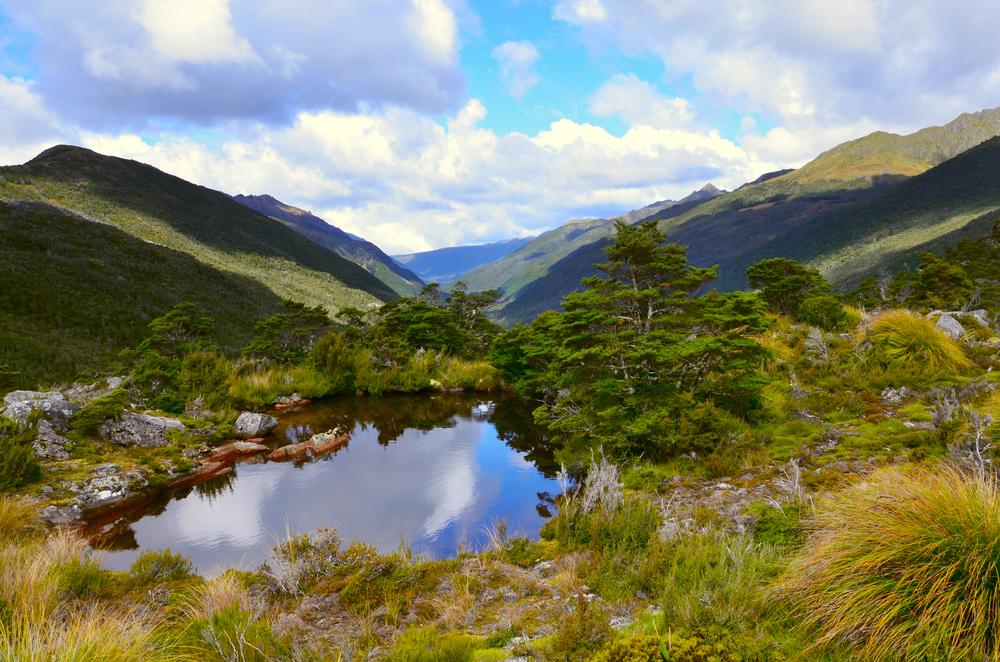 ニュージーランド カフランギ国立公園