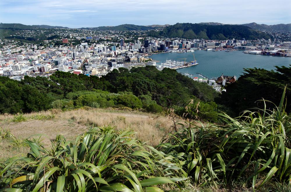 ニュージーランド ウェリントンのヴィクトリア山展望台