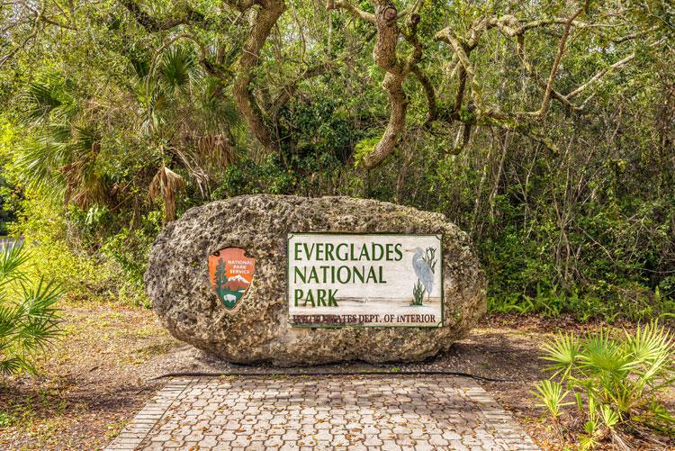 アメリカ マイアミのエバーグレーズ国立公園