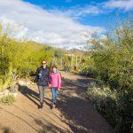 アリゾナ州フェニックスの砂漠植物園