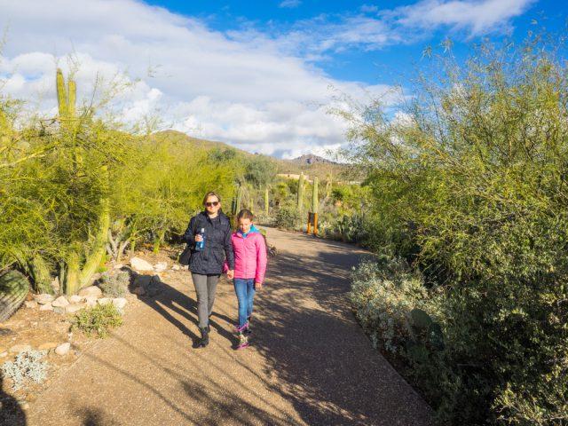 アメリカ アリゾナ州フェニックスの砂漠植物園