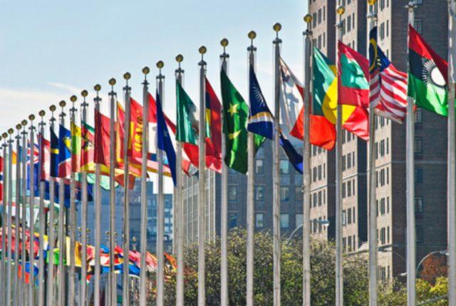 国際機関に就職
