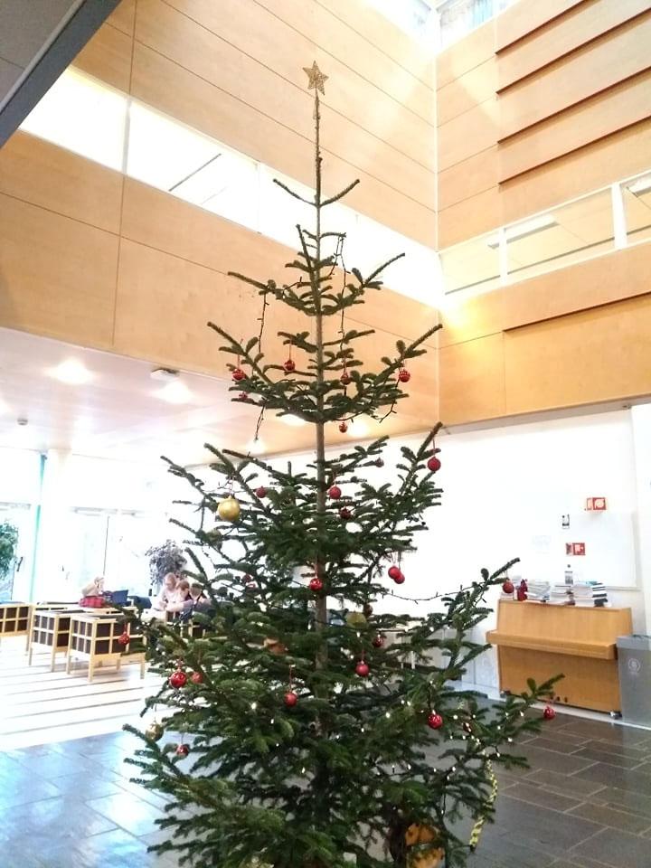 ノルウェー オスロ大学のクリスマスツリー