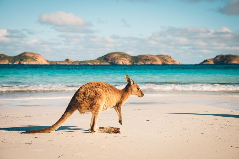 オーストラリアで2週間の短期語学留学