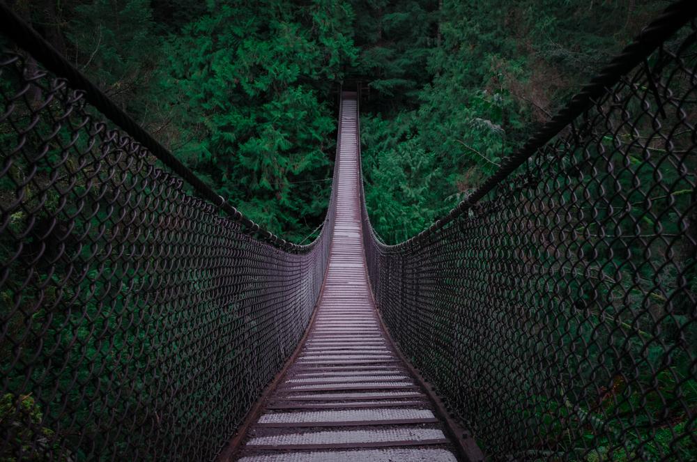 カナダ短期語学留学でできること キャピラノ吊り橋
