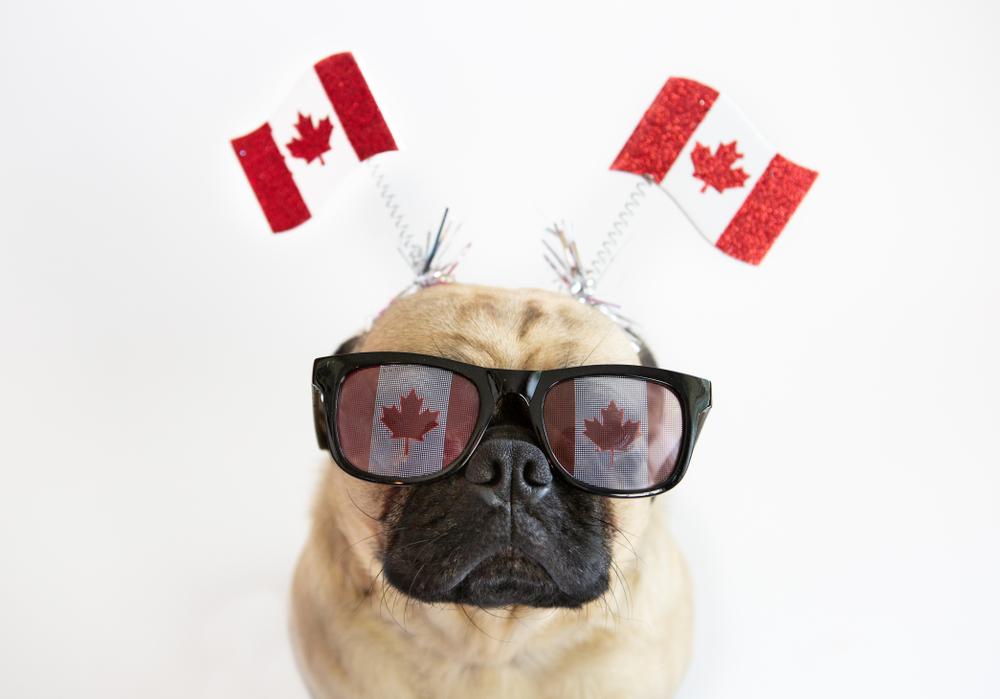 カナダ短期語学留学1か月
