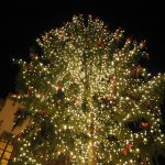 絶対に一度は訪れるべき!ドイツ・フランクフルトのクリスマスマーケット!!