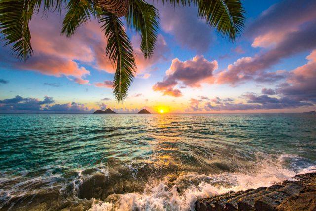 ハワイの治安