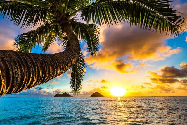 ハワイ長期語学留学のメリット