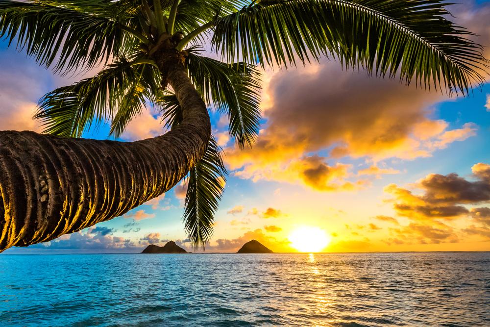 【ハワイ長期留学】リゾートで6か月語学留学!留学費用は?