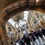 ロンドンの自然博物館は次元が違う!!