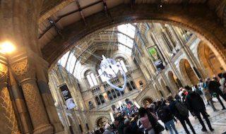 イギリス ロンドン 自然博物館