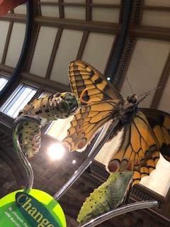 ロンドン自然博物館