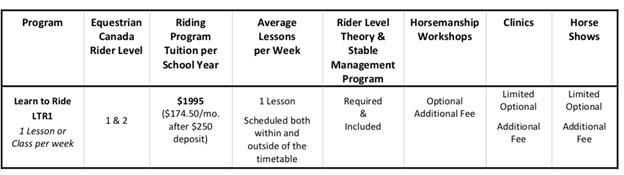 乗馬プログラムのカリキュラム