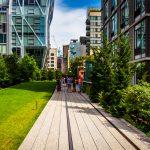 ニューヨークに留学したらThe High Lineへ行ってみよう♪