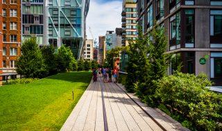 ニューヨークに留学したらThe High Lineへ行ってみよう