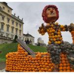 世界最大のカボチャ祭り @ドイツ ルートヴィヒスブルク