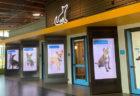 Annenberg Petspaceは、どうして最先端の動物保護施設といわれるの?