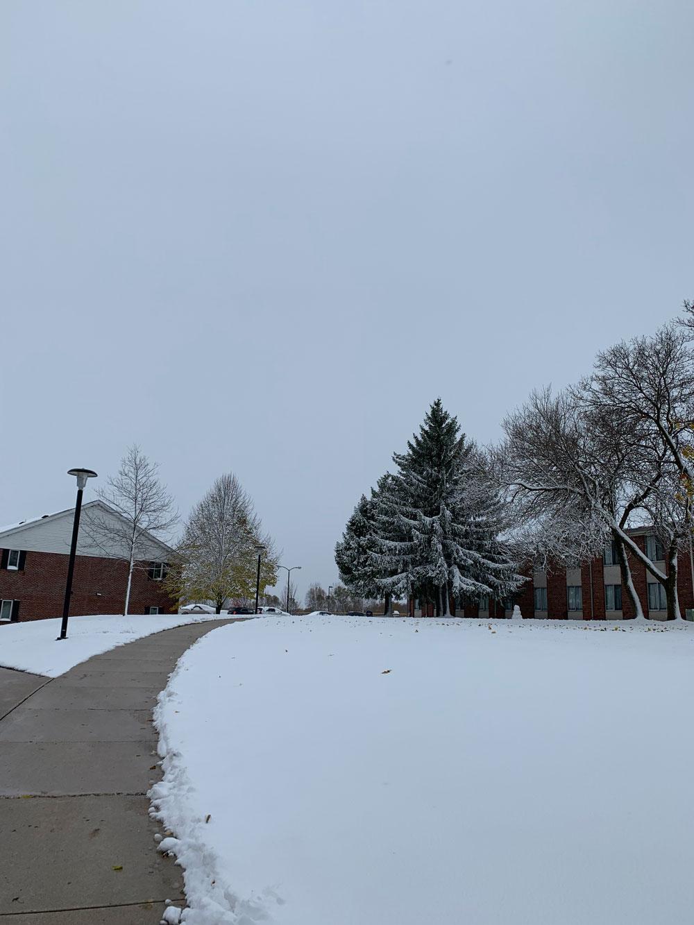 アメリカ ウィスコンシン州で雪