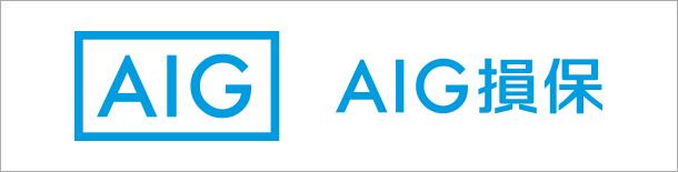 海外保険 AIG損保