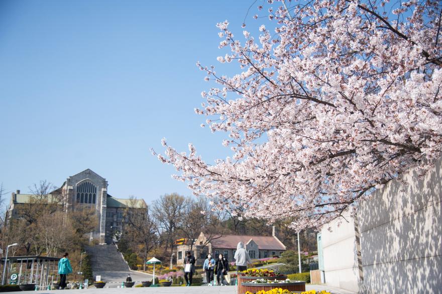 韓国の梨花女子大学