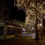 コロナ下のドイツでのクリスマスの過ごし方は?大晦日は日本と違う?